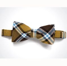 Cool tan/blue bow tie