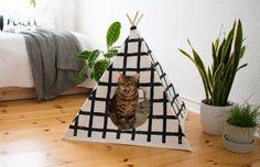 Katzen lieben es sich in kuscheligen Höhlen zu verstecken. Da wird es doch höchste Zeit für eine Version, die auch der Einrichtung gut tut. Das Bes...