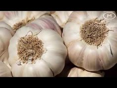 The hot new eat garlic every day, and see what happens to you What Happened To You, Home Remedies, Garlic, Make It Yourself, Shit Happens, Eat, Youtube, Plant, Youtubers