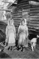 Arvi Saverikko, 1936 Petsamo Jiertpieljaurin  kolttaemäntiä