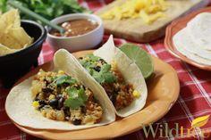 Quinoa & Corn Tacos!  www.Facebook.com/wildtreeofficial