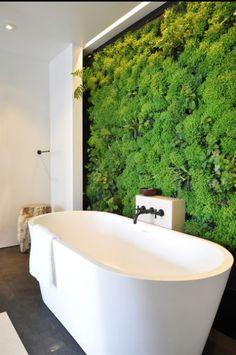 Zielona ściana we wnętrzu łazienki? Czemu nie! Łazienka to idealne miejsce na to, aby zaprojektować i zorganizować zieloną ścianę, zieleń we wnętrzu czy ogród wertykalny. Zobacz jak wygląda wnętrze z zieloną ścianą i zainspiruj się! Zapraszam na bloga Pani Dyrektor!
