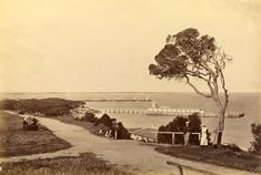 Fred Kruger  born Germany 1831, arrived Australia 1860, died 1888  Steamboat jetty and bathing houses, from Esplanade, Queenscliff  c.1878-82