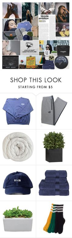"""collab with graham—"" by a-dventurous ❤ liked on Polyvore featuring NIKE, adidas, Linea, Crate and Barrel, Christy, Chanel, collabwithlexi, gottatagrandomn3ss and jujusbaes"