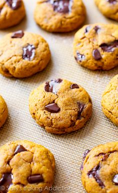 Dark Chocolate Chip Pumpkin Cookies that are CHEWY not cakey!