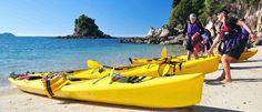 Sea Kayak with Wilsons Abel Tasman National Park