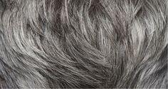 Ősz haj