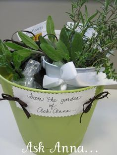 Hostess Gift - Herbs in a bucket