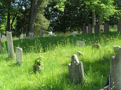 The Old Burying Ground in Huntington where federal marshal Zeke Drummond was buried, from To Sketch a Thief.