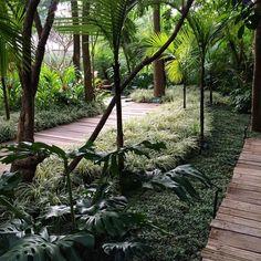 Bosque tropical de @gilbertoelkis na @casacor_oficial