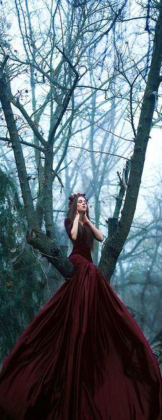 Fairytale Fashion Fantasy / karen cox. ♥ Modern Fairytale | cynthia reccord | retrato | retratos femininos | ensaio feminino | ensaio externo | fotografia | ensaio fotográfico | fotógrafa | mulher | book | girl | senior | shooting | photography | photo | photograph | vestido | dress | fog | neblina