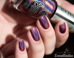 DL Holo 1