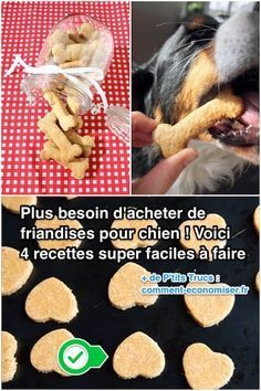 Heureusement, pas besoin de savoir cuisiner pour préparer de délicieuses friandises maison pour votre chien. Non seulement ces snacks sont bons pour la santé des chiens, mais en plus, ça ne coûte presque rien. Découvrez l'astuce ici : http://www.comment-economiser.fr/pas-besoin-acheter-friandises-pour-chien-4-recettes-faciles.html?utm_content=buffer96b66&utm_medium=social&utm_source=pinterest.com&utm_campaign=buffer