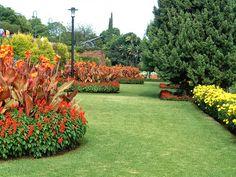 JORNAL O RESUMO - PARÁBOLAS - REFLEXÃO DO DIA: Parábola : O jardineiro que era um bom empresário....