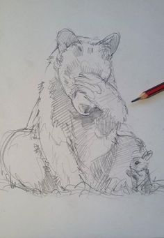 Lunchtime cuppa & a concept sketch. 'The bear & the hare - The early years' Just when you thought it couldn't get any cuter!! Lol Tony O'Connor whitetreestudio.ie