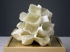 Jessica Drenk  cotton balls dipped in porcelain clay
