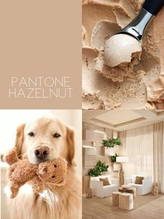Soft Brown or Tan or Pantone Hazelnut
