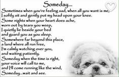 Shih Tzu Dog Pet Loss Memorial Bereavement Fridge by Chaffys Your place to buy and sell all things handmade Source by mysixbubbies The post Your place to buy and sell all things handmade appeared first on Dogs GP. Pet Loss Quotes, Dog Quotes, Animal Quotes, Animal Poems, Life Quotes, Shih Tzu Hund, Shih Tzu Dog, Shih Tzus, Pet Loss Grief