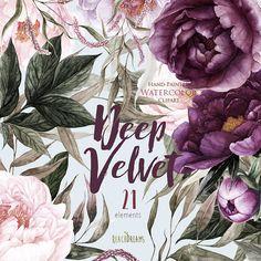 Pfingstrosen Blumen Aquarell floral Elemente Plum Burgund
