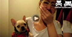 She Tells Her Dog 'I Love You,' But She Can't Believe His Response.