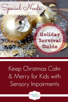 Special needs kids who are blind, deafblind, autistic or have a sensory processing disorder (SPD) can find the holidays incredibly stressful and overwhelming. These simple tips and really help keep everyone happy and calm this Christmas season!
