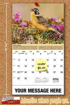 2021 Garden Song Birds Wall Calendars low as Advertise your business, organization or event logo and ad message the entire year! Promotional Calendars, Wall Calendars, Garden Birds, Phone Messages, Business Organization, Holiday Cards, Logo, Outdoor Decor, Christian Christmas Cards