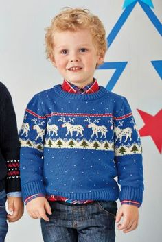Buy Cobalt Reindeer Fairisle Pattern Jumper (3mths-6yrs) online today at Next: United States of America