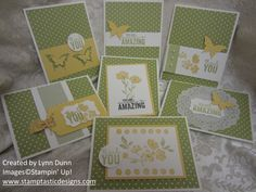 Video Tutorial - One Sheet Wonder and the Painted Petals Stamp Set