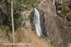 Cedar Creek Falls  Tamborine National Park, Queensland, Australia Cedar Creek Falls, Mt Tamborine, Queensland Australia, Australia Travel, Waterfalls, National Parks, Australia Destinations, Waterfall, State Parks