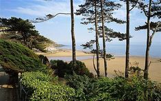 The Gower Peninsula, Wales: the perfect break - Telegraph Wales Uk, South Wales, Wales Beach, Great Places, Places To Visit, Cheap Beach Vacations, British Beaches, Gower Peninsula, Visit Wales