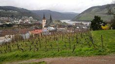 Wines of the World: Bingen Mountains, World, Nature, Travel, Wine, Naturaleza, Viajes, Destinations, The World
