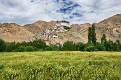 Chemrey Monastery, Leh, India