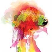 Ella Tjader Illustration Portfolio – Fashion, Art and Nature Illustrator Caribbean Culture, Graphic Design Art, 2d Design, Ink Painting, Book Illustration, Watercolor And Ink, Painting Inspiration, Illustrators, Sketches