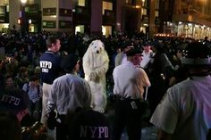 Police Arrest a Polar Bear: A polar bear in handcuffs? That was the scene in New York City's Financial District on Sept. 22 as police arrested a man in costume during the Flood Wall Street demonstration. The protest came a day after more than 310,000 marched through Manhattan calling for action from world leaders gathering for the United Nations Climate Summit. The bear, nicknamed Frostpaw, is the Center for Biological Diversity's mascot in its campaign to fight climate change. (Photo: ...