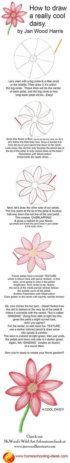 Drawing Techniques How to draw a cute daisy! Step by step, easy instructions. You could draw it as a hair accessorie even - This easy tutorial shows you how to draw a daisy, step by step Drawing Lessons, Drawing Techniques, Drawing Tips, Drawing Sketches, Art Lessons, Drawing Ideas, Sketching, Beginner Drawing, Easy Sketches