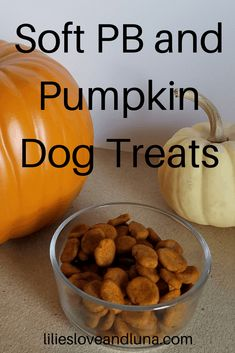 Soft Dog Treats, Puppy Treats, Healthy Dog Treats, Dog Treats With Pumpkin, Natural Dog Treats, Pumpkin Recipes For Dogs, Diy Dog Treats, Natural Dog Food, Dog Biscuit Recipes