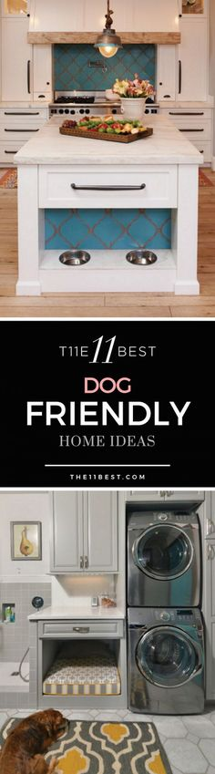 The 11 Best Dog Friendly Home Ideas