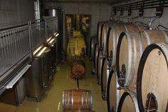 Österreich - Steiermark  Weingut Gross  Cellar