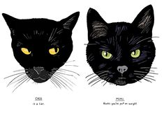 All Black Cats Are NOT Alike!