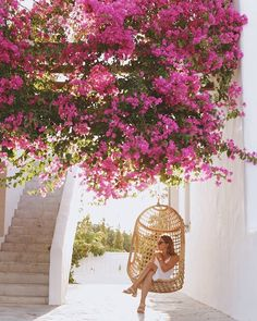 243 Likes, 6 Comments - Silia Greek Island Hopping, Paros Greece, Pure Happiness, Greek Islands, Sunny Days, Sunnies, Yummy Food, Pure Products, Happy