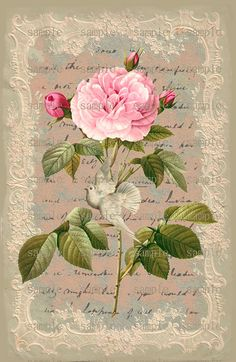 Instant Download Rose Sheet No. 3 U Print by CountryAtHeart2008