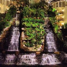 This cascading waterfall is the view for hundreds of beautiful guest rooms under a glass atrium at the Gaylord Opryland Resort. Photo by jasonshipman • Instagram