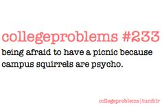 and here i thought it was just because FDU had squirrels from the hood! haha!