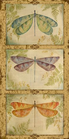 Dragonfly Trio-3 Painting  - Dragonfly Trio-3 Fine Art Print