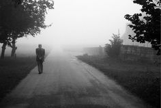 Fog Is Only Temporary. Sit In It. Why are we here on this earth? What is our purpose? These types of questions are very popular in every culture on this planet.
