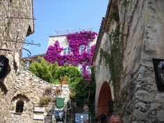 Eze, France.  All the buildings look like this...amazing!