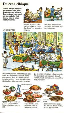 Ancient Roman Food, Ancient Rome, Ancient History, Teaching Latin, Latin Language, World Languages, Latin Words, Bible Lessons, Ancient Civilizations