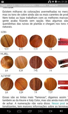 Tintas Different Hair Colors, Copper Hair, Pinterest Hair, World Of Color, New Hair, Redheads, Hair Inspiration, Beauty Hacks, Hair Makeup