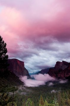 Pink Tunnel at Yosemite / by Ben Neumann