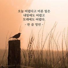 오늘 어렵다고 미룬 일 – 한 줄 명언 Wise Quotes, Famous Quotes, Korean Quotes, Idioms, Proverbs, Cool Words, Sentences, Dreaming Of You, How To Memorize Things